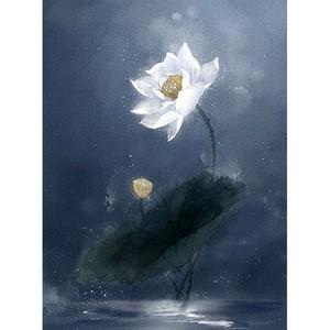 菲莫斯软装 菲-逊亚-壁画 BM-83134 国色天香
