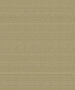 木真美品壁纸TS--ZG5024
