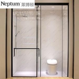 莱博顿 淋浴房 NPT1141